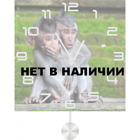 Настенные часы SvS 5512516