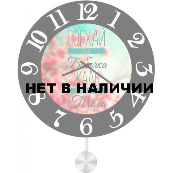 Настенные часы SvS 5512588