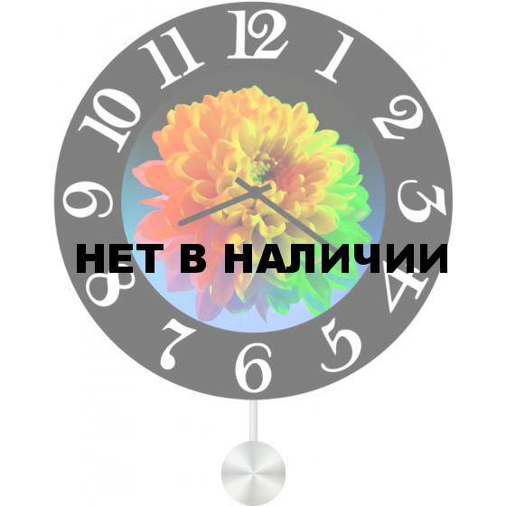 Настенные часы SvS 5512604
