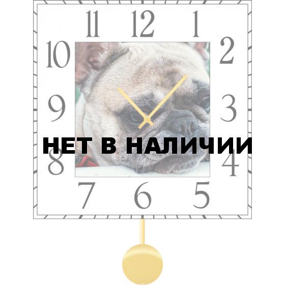 Настенные часы SvS 6011870