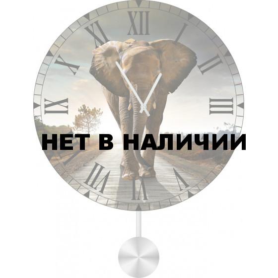 Настенные часы SvS 6012044