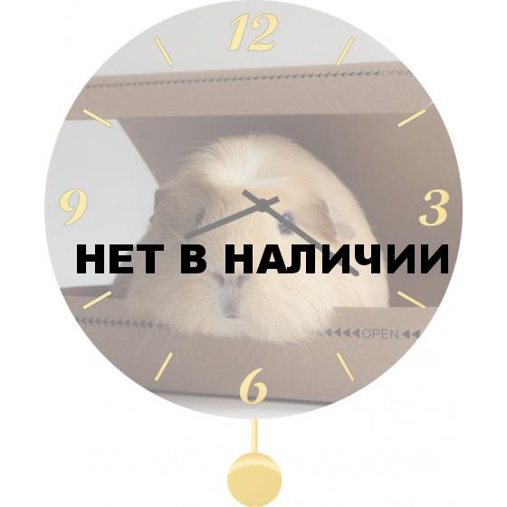 Настенные часы SvS 6012074