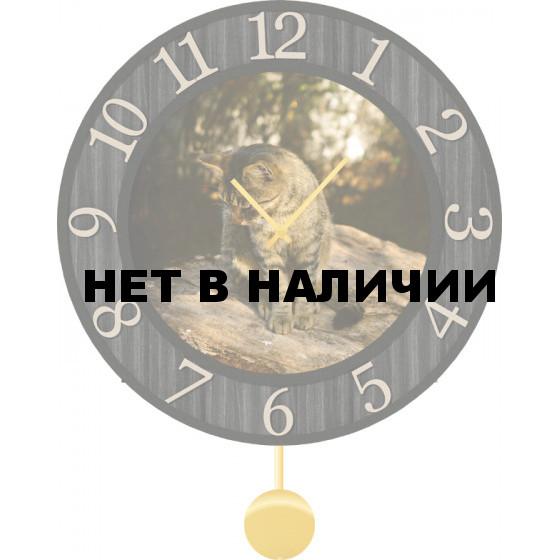 Настенные часы SvS 6012211
