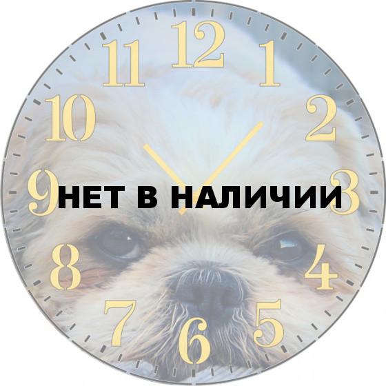 Настенные часы SvS 3002072