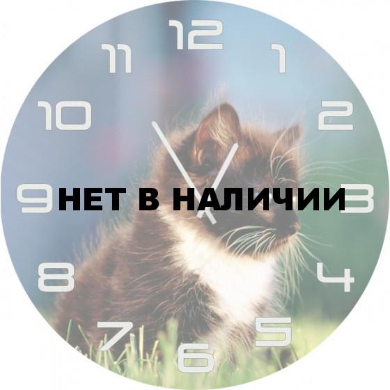 Настенные часы SvS 3501847