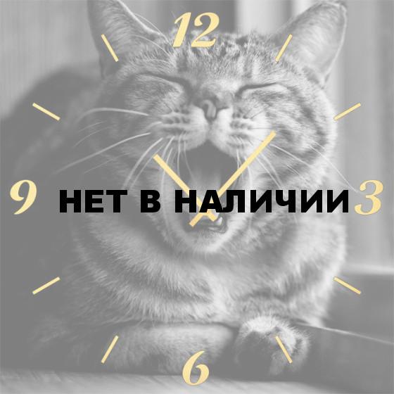Настенные часы SvS 3501858