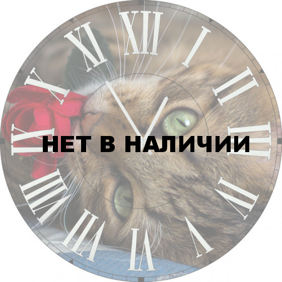 Настенные часы SvS 3501863