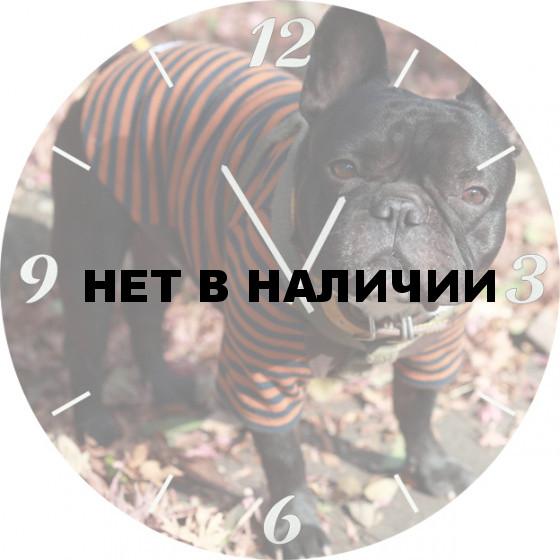 Настенные часы SvS 3501865