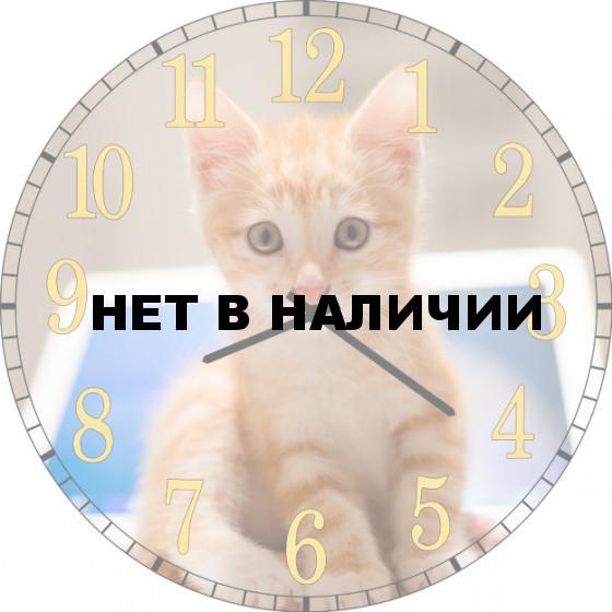 Настенные часы SvS 3502034