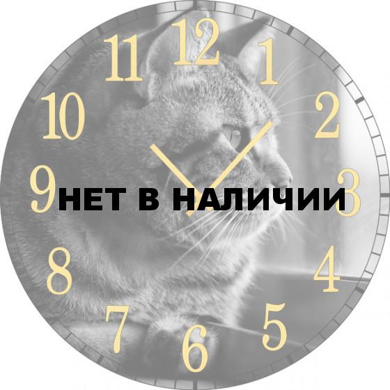 Настенные часы SvS 3502052