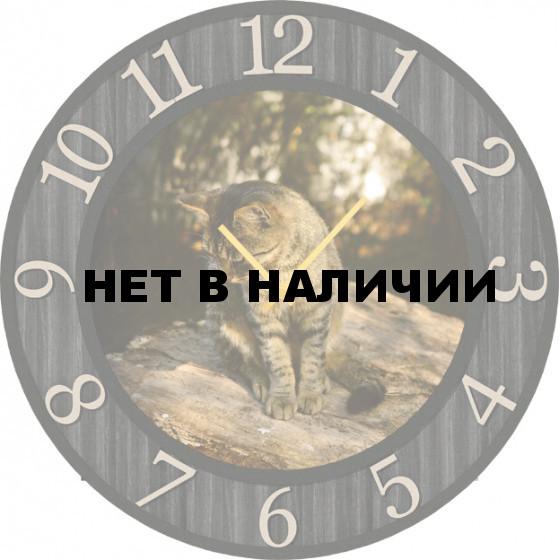 Настенные часы SvS 3502211
