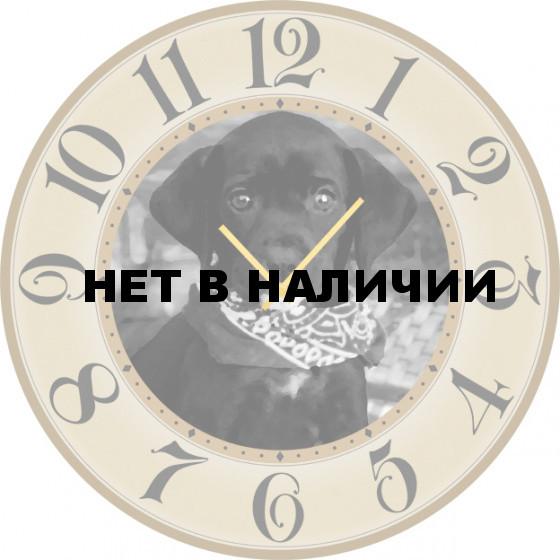Настенные часы SvS 3502256
