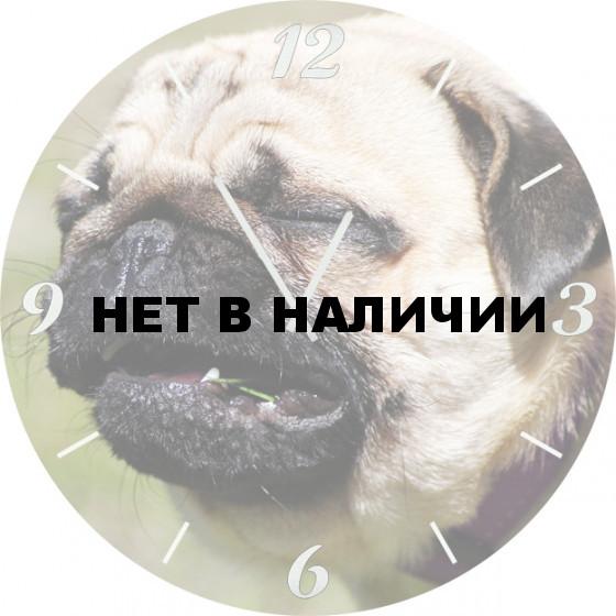 Настенные часы SvS 4001875