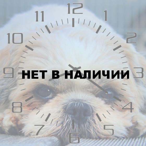 Настенные часы SvS 4002071