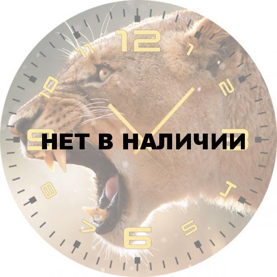 Настенные часы SvS 4002095
