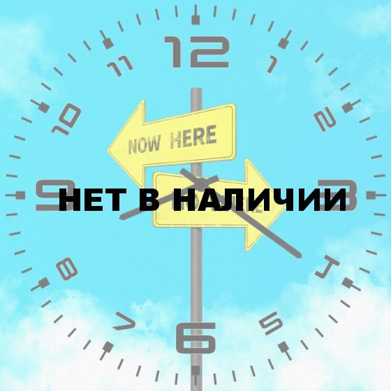 Настенные часы SvS 4002436