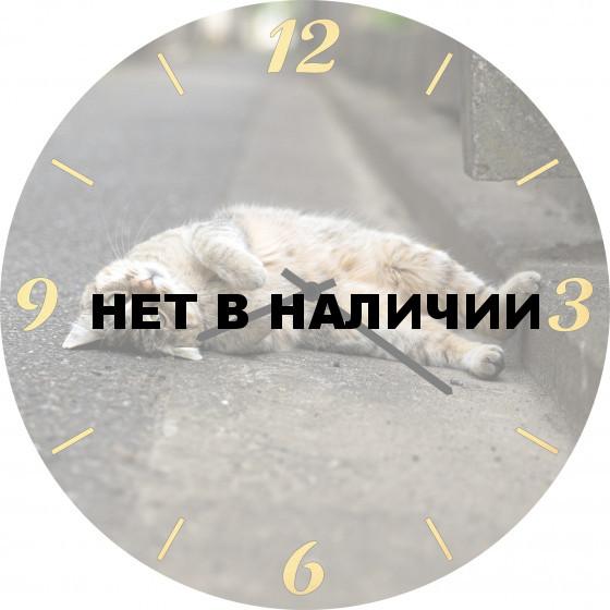 Настенные часы SvS 4501851