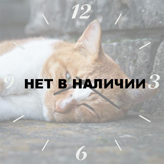 Настенные часы SvS 4501852