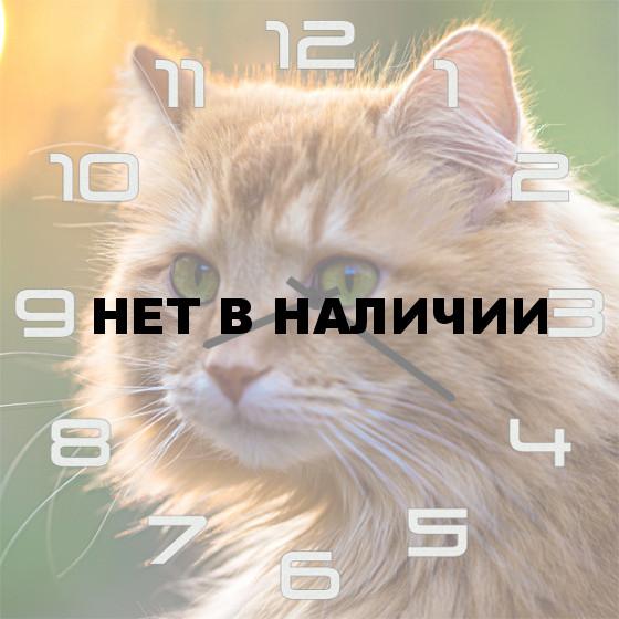 Настенные часы SvS 4501854