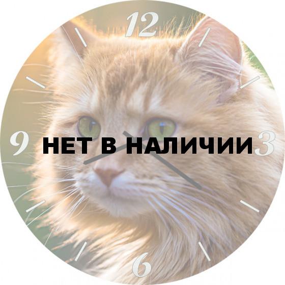 Настенные часы SvS 4501855