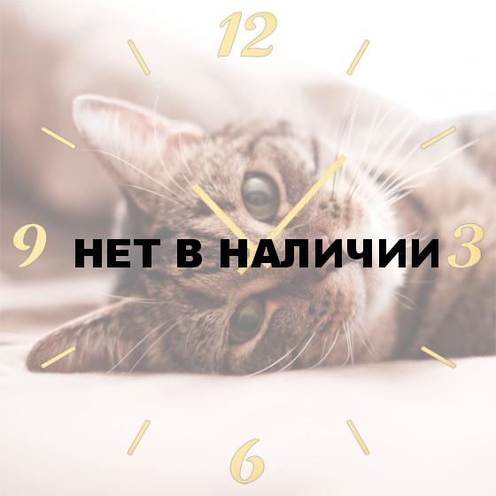 Настенные часы SvS 4501868