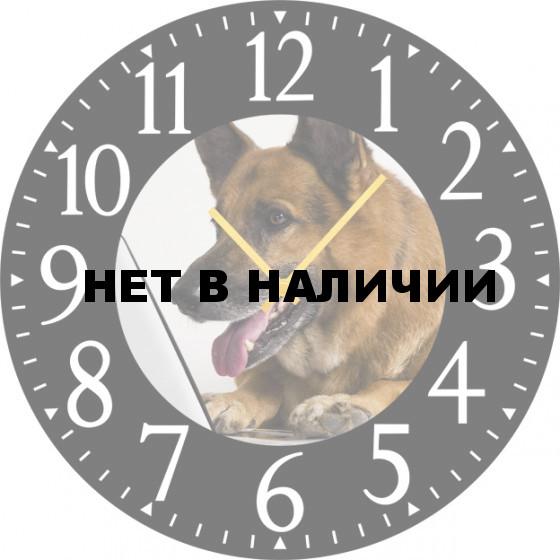 Настенные часы SvS 4502030
