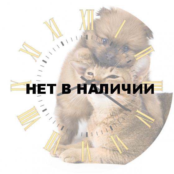 Настенные часы SvS 4502083