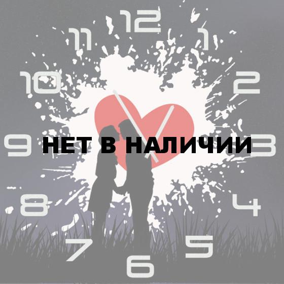 Настенные часы SvS 4502312