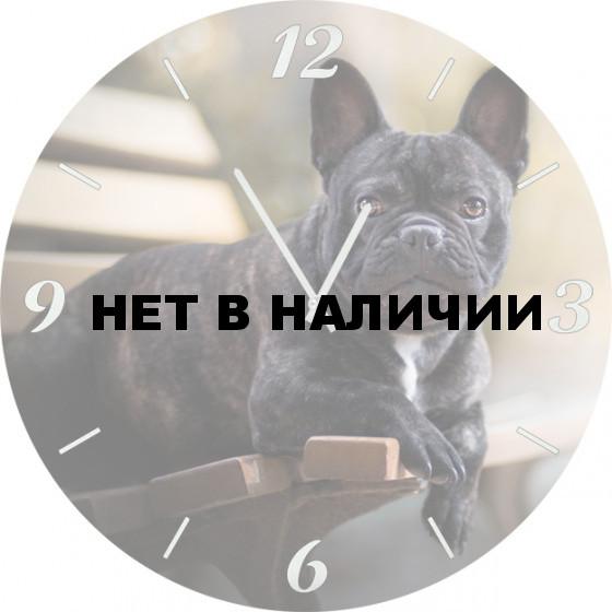 Настенные часы SvS 5001861