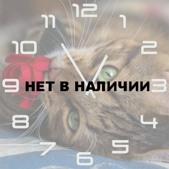Настенные часы SvS 5001862