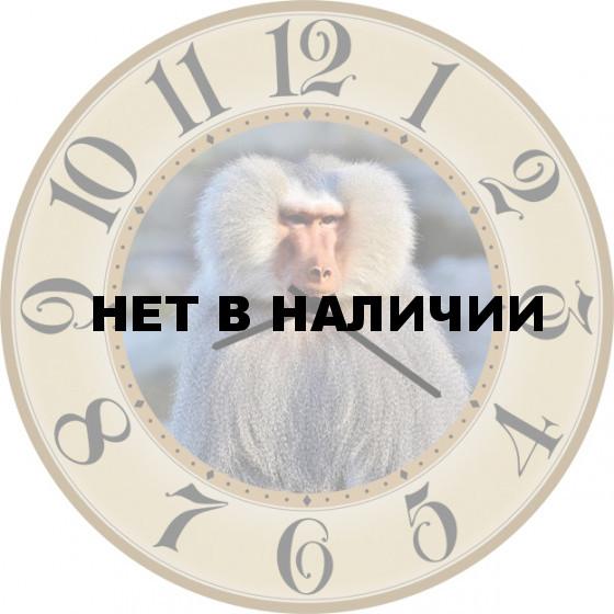 Настенные часы SvS 5002231