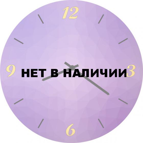 Настенные часы SvS 5501802