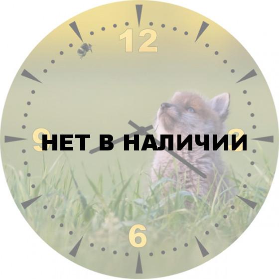 Настенные часы SvS 5501843