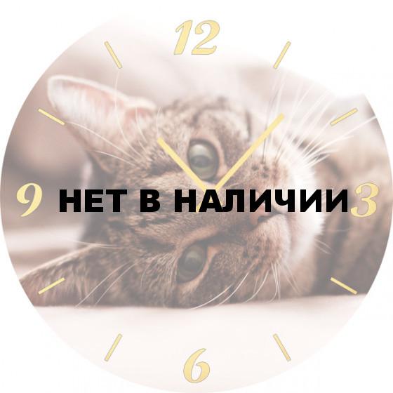 Настенные часы SvS 5501869