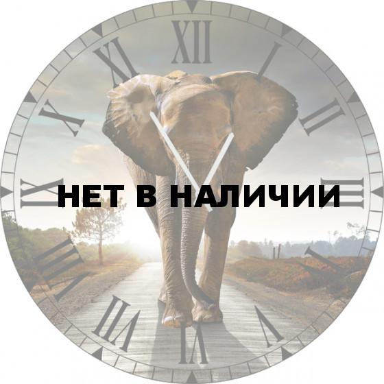 Настенные часы SvS 5502044