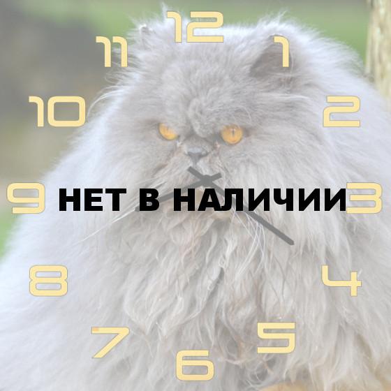 Настенные часы SvS 5502049