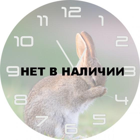 Настенные часы SvS 5502062
