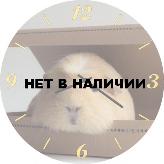 Настенные часы SvS 5502074