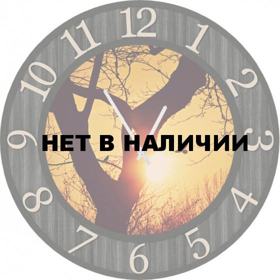 Настенные часы SvS 5502201