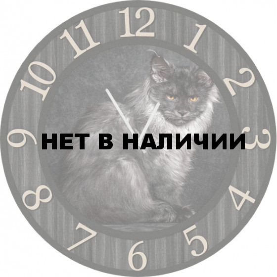 Настенные часы SvS 5502209