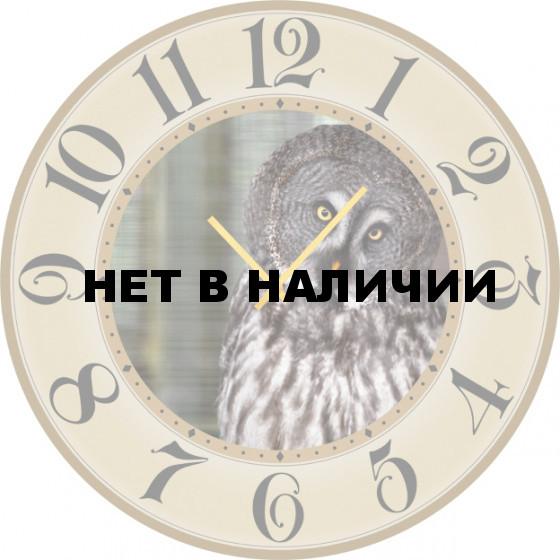 Настенные часы SvS 5502230