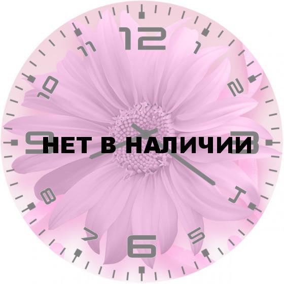 Настенные часы SvS 5502427