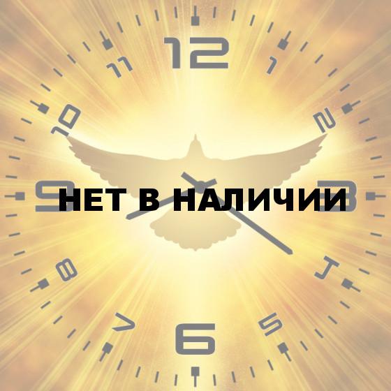 Настенные часы SvS 5502430