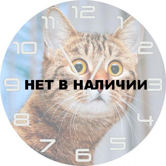 Настенные часы SvS 5502513
