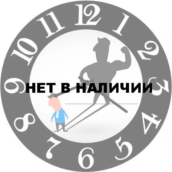 Настенные часы SvS 5502555