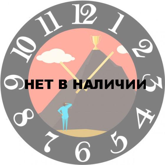 Настенные часы SvS 5502556