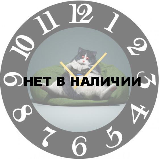 Настенные часы SvS 5502598
