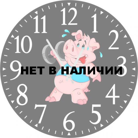 Настенные часы SvS 5502732