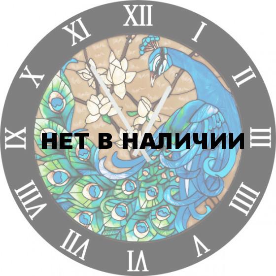 Настенные часы SvS 5502830