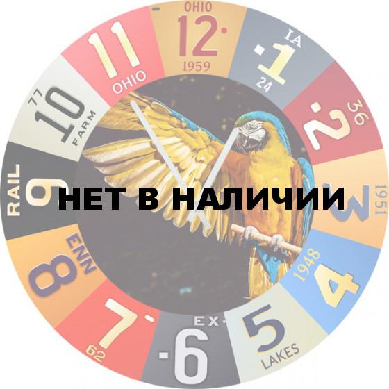 Настенные часы SvS 5502936